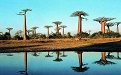 马达加斯加签证常见问题